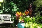 Acton Park TAS Tropical landscaping 11