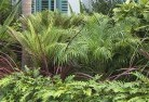 Acton Park TAS Tropical landscaping 2