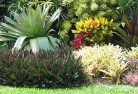 Acton Park TAS Tropical landscaping 9